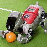 Four legged robot