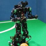 Small size humanoid robot