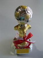 ロボカップPK戦の優勝トロフィー (2004)