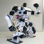 はじめロボット5号機の太極拳 (2003)